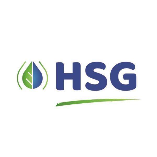 LOGO_HSG GmbH