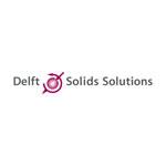 LOGO_Delft Solids Solutions B.V.
