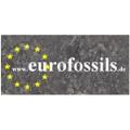 LOGO_Eurofossils