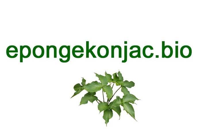 LOGO_DERMOTECHNIC / DBS KONJAC SPONGES