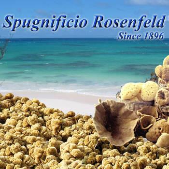 LOGO_ROSENFELD SEA SPONGES