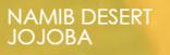 LOGO_Namib Desert Jojoba CC