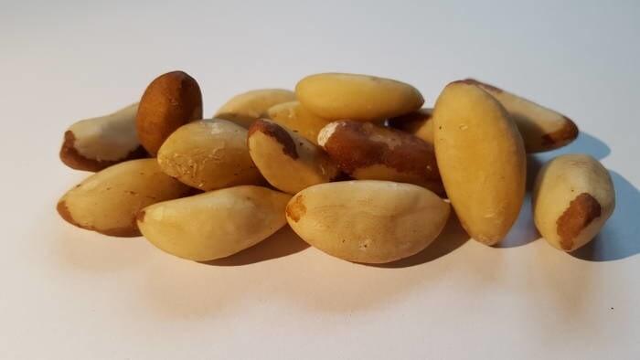 LOGO_Organic Brazil Nuts