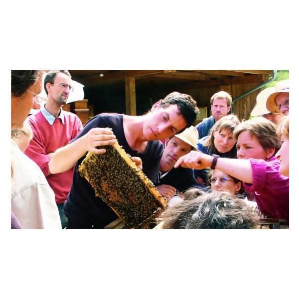 LOGO_Demeter beekeeping standards