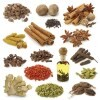 LOGO_All Kinds of Spices & Herbs