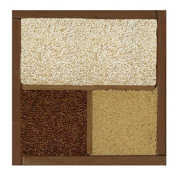 LOGO_Quinoa Real white, Quinoa red, Quinoa black, Organic / Bio, Gluten free