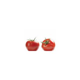 LOGO_Organic tomatoes frozen with skin
