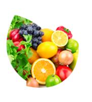LOGO_Frucht- und Gemüsepulver