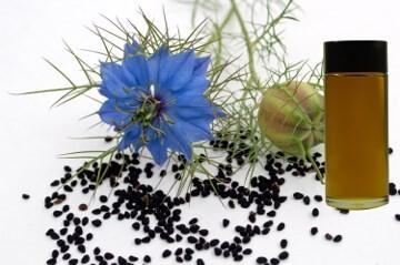 LOGO_Bio-Schwarzkümmelöl (NIGELLA SATIVA SEED OIL)