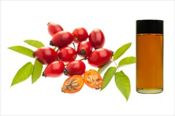LOGO_Organic rose hip seed oil (ROSA CANINA SEED EXTRACT)