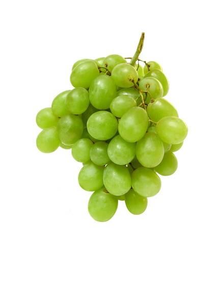 LOGO_Organic Grape