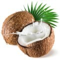 LOGO_Coconut