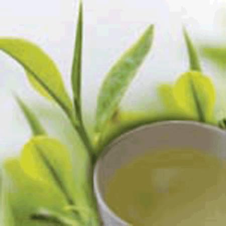 LOGO_Organic & Fair Trade Green Tea
