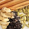 LOGO_Organic & Fair Trade Spices
