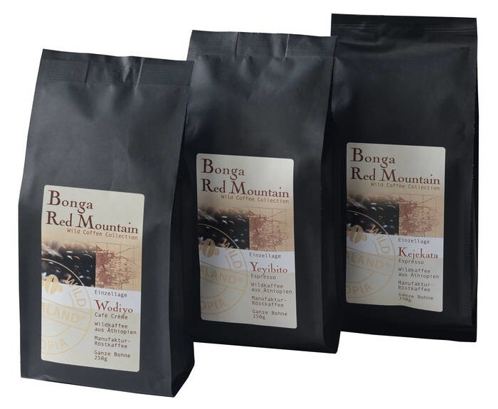 LOGO_Wild Coffee Collection - Bonga Red Mountain