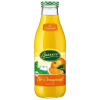 LOGO_Bauer Bio-Orangen Direktsaft