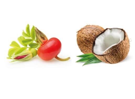 LOGO_Organic Rosehip Seed Oil & Organic Coconut Oil