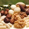 LOGO_Nüsse, Mandeln und andere Kerne