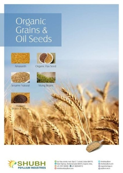 LOGO_Organic Grains and Oil Seeds