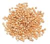 LOGO_Quinoa Grains