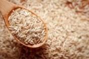 LOGO_Organischer Reis