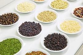 LOGO_Individual ingredients