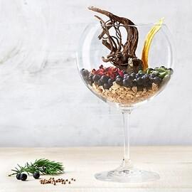 LOGO_Gin MIX – Botanicals für Spirituosen