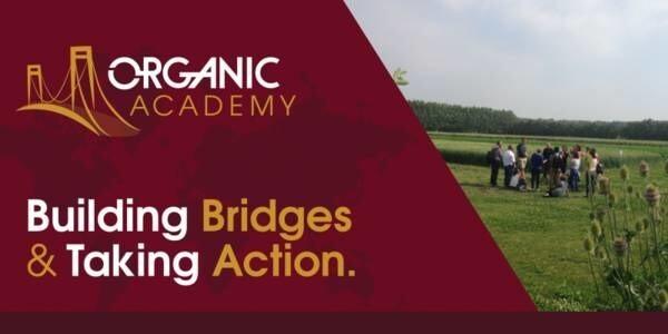 LOGO_Organic Academy