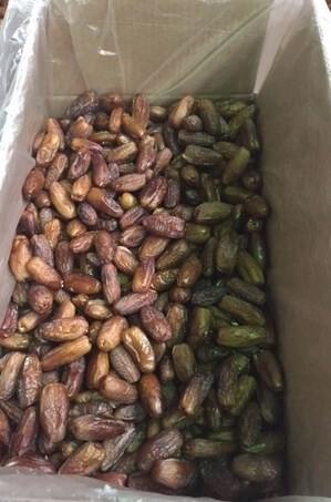 LOGO_Handel mit getrockneten Datteln, gefüllt und nicht gefüllt