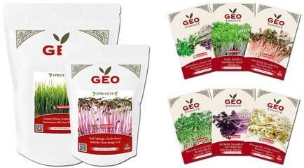 LOGO_Organic Seeds Packets