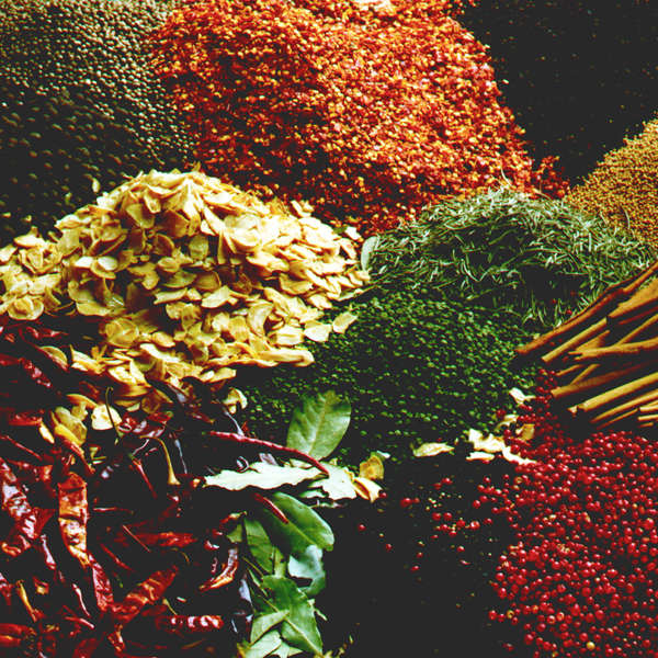 LOGO_Organic Herbs & Spices