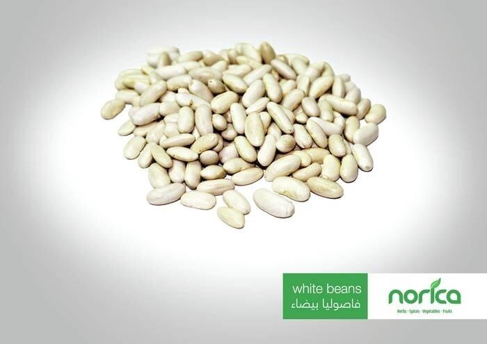 LOGO_Ägyptische Hülsenfrüchte