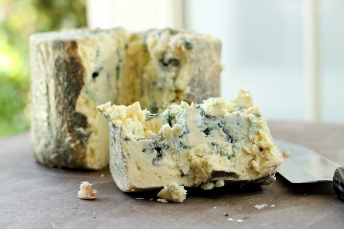 LOGO_Blue mould cheese bio
