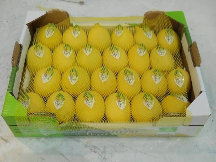 LOGO_Biological Lemon Primo Fiore