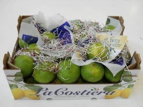 LOGO_Biological Bergamot lemon