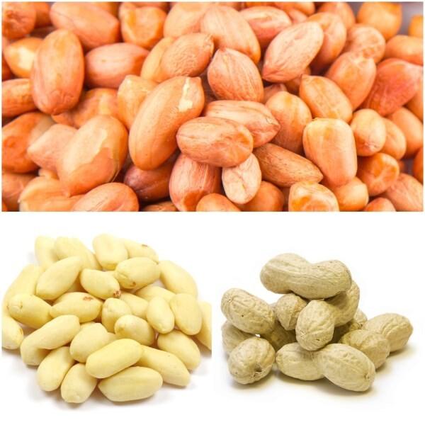 LOGO_Erdnüsse