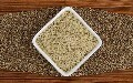 LOGO_Wholesale Bulk Hulled Hempseed