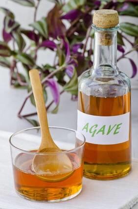 LOGO_Agave syrup organic