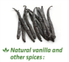 LOGO_Sterilization of Vanilla beans and powder