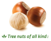 LOGO_Sterilization of all kinds of tree nuts