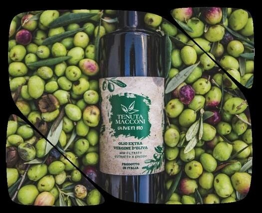 LOGO_Olivenöl extra vergine Macconiöl