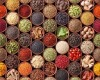 LOGO_Spices & Spice Blends