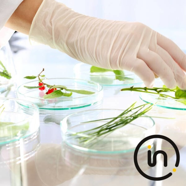 LOGO_Food testing by Intertek – accredited quality and safety at one stop