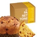 LOGO_Traditioneller Panettone