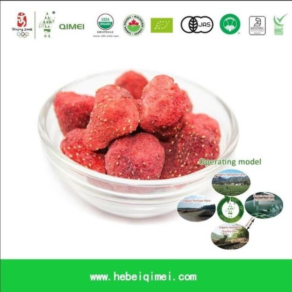 LOGO_Organic Freeze Dry Vegetables, Fruits and Herbs