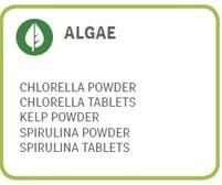 LOGO_Algae