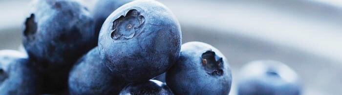 LOGO_Frucht- und Gemüse-Ingredients