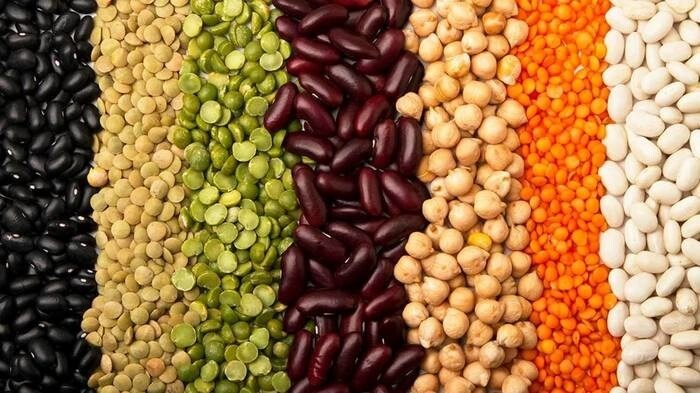 LOGO_Pulses, Lentils and Chickpeas