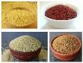 LOGO_Millets (Natural & Hulled) -Foxtail Millet, Kodo Millet, Little Millet, Pearl Millet, Proso Millet, Finger Millet, Barnyard Millet, Sorghum