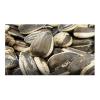 LOGO_Organic Beans, Pulses, Grain & Oil Seed